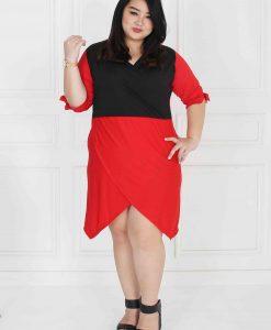 dress big size jumbo (22)